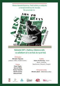 APN - 22.11.2012 - plagátik